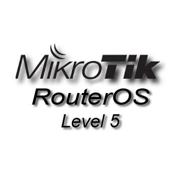 Licenta RouterOS SWL5 - CHR P10